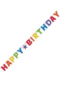 Primary Rainbow Birthday Letter Banner