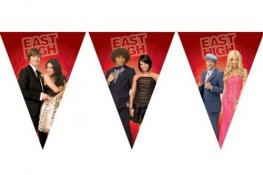 High School Musical Plastic Flag Banner