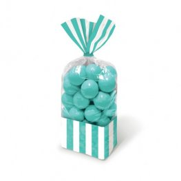 Robin Egg Blue Striped Party Bags x10