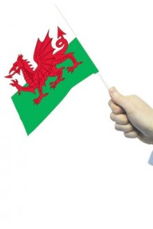 Wales Hand Flags 12pk