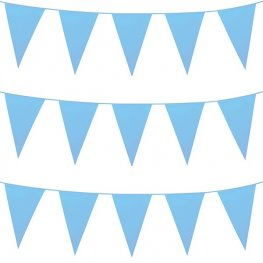 Baby Blue Giant Bunting