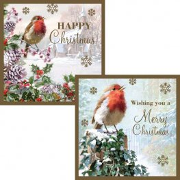 Robin With Snow Christmas Cards 12pk