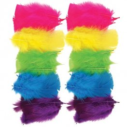 Primary Coloured Assorted Feathers