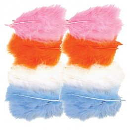 Pastel Coloured Assorted Feathers