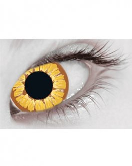 Golden Vampire Daily Contact Lenses