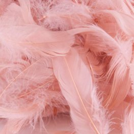 Rose Gold Feathers 50g