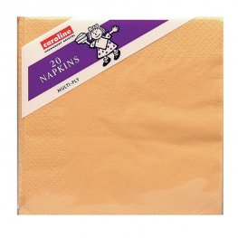 Peach Napkins 6 Packs Of 20
