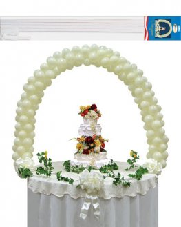 Balloon Arch Kit