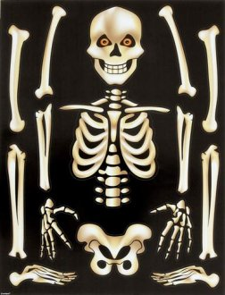 Skeleton Window Cling Sheet
