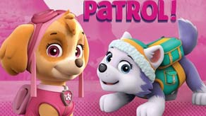 Paw Patrol Pink Themed Parties