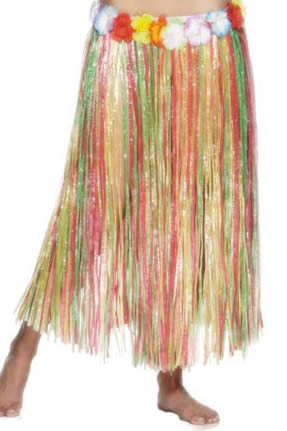Multi Coloured Hawaiian Hula Skirt